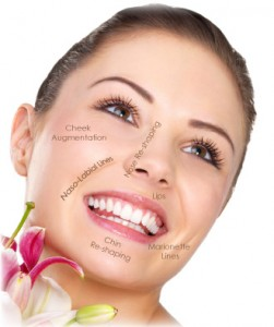 face fillers photo